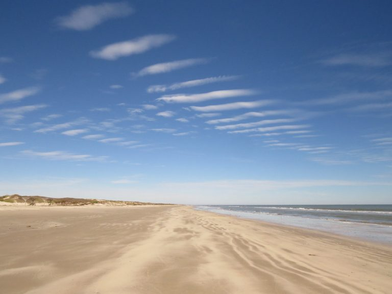 Mustang Island State Park is one of the best beaches in Texas for families