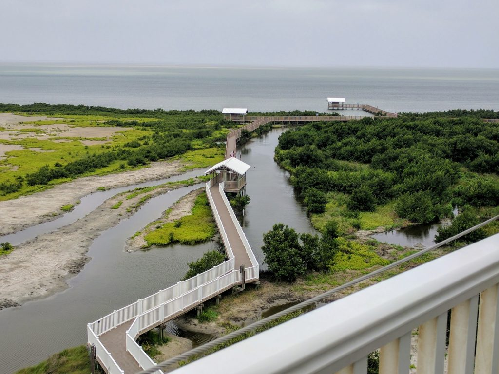 10 Fun Things to Do in South Padre Island 4
