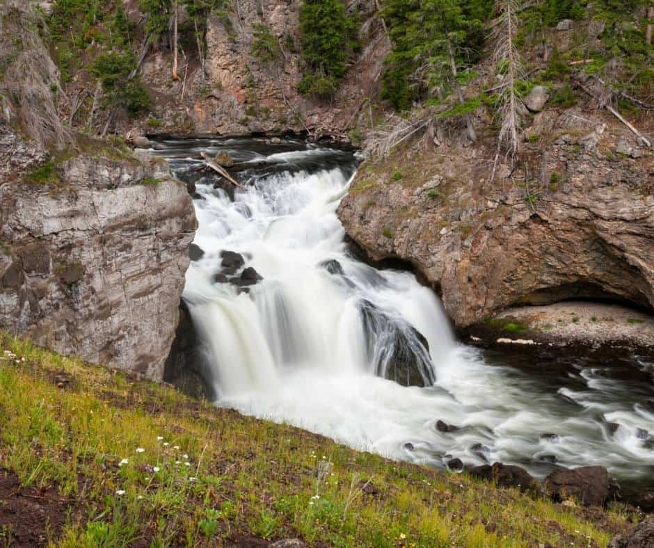 Over 25 Amazing Things to do in Yellowstone with Kids 5