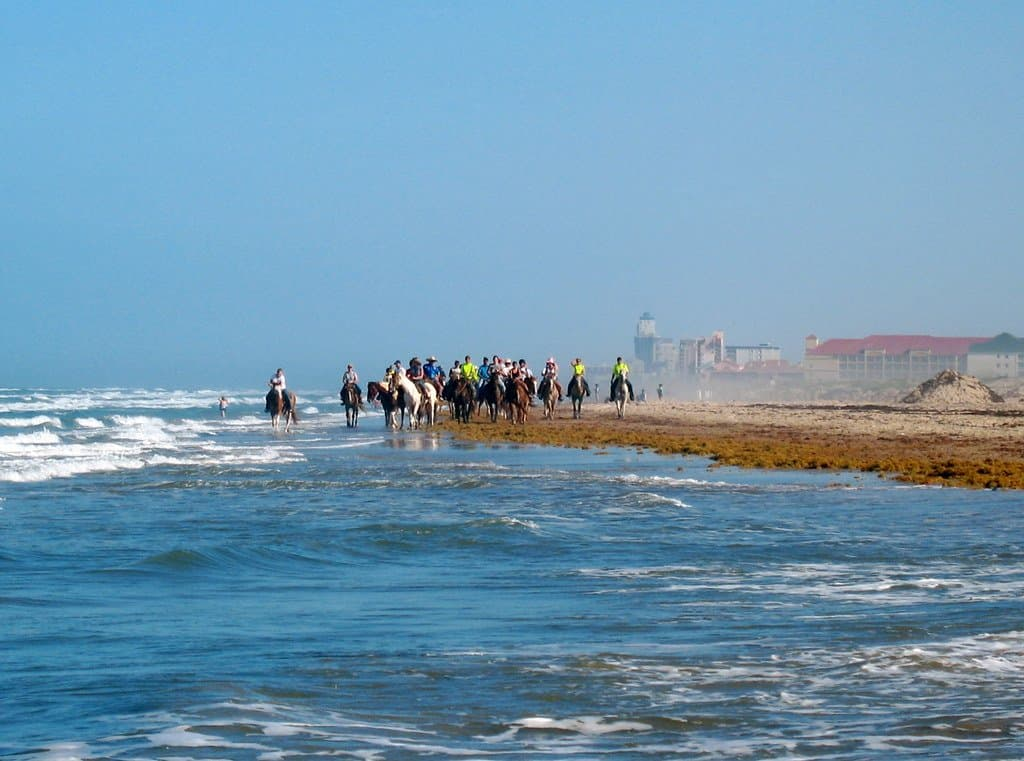 10 Fun Things to Do in South Padre Island 1
