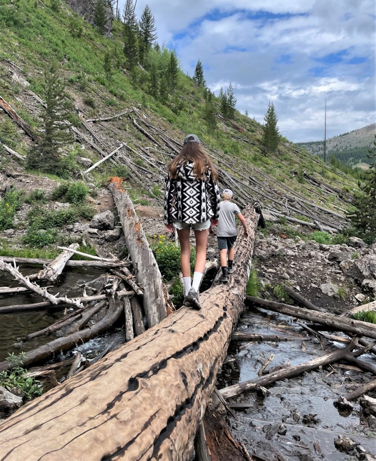 One of the best things to do in Yellowstone with kids is take a hike