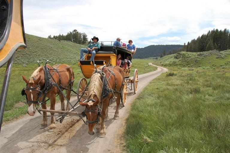 Stage Coach Ride Yellowstone