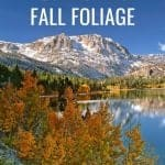 California Fall Foliage