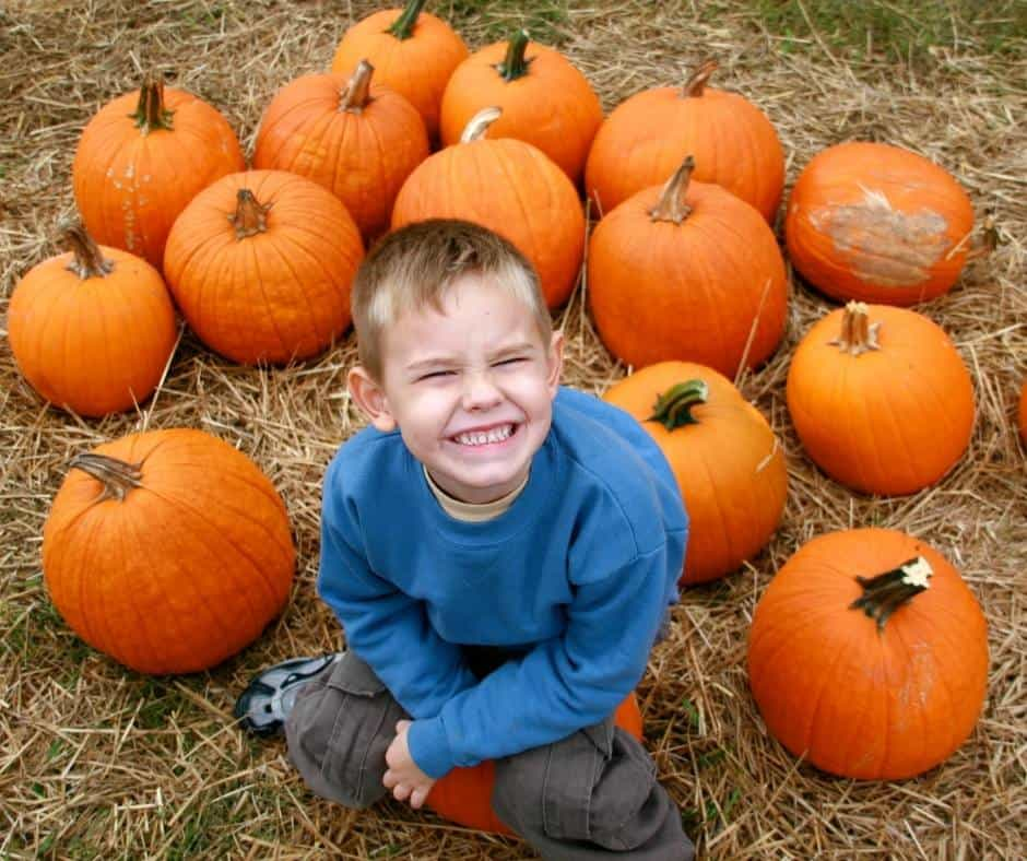 Having a blast at pumpkin patches in Las Vegas