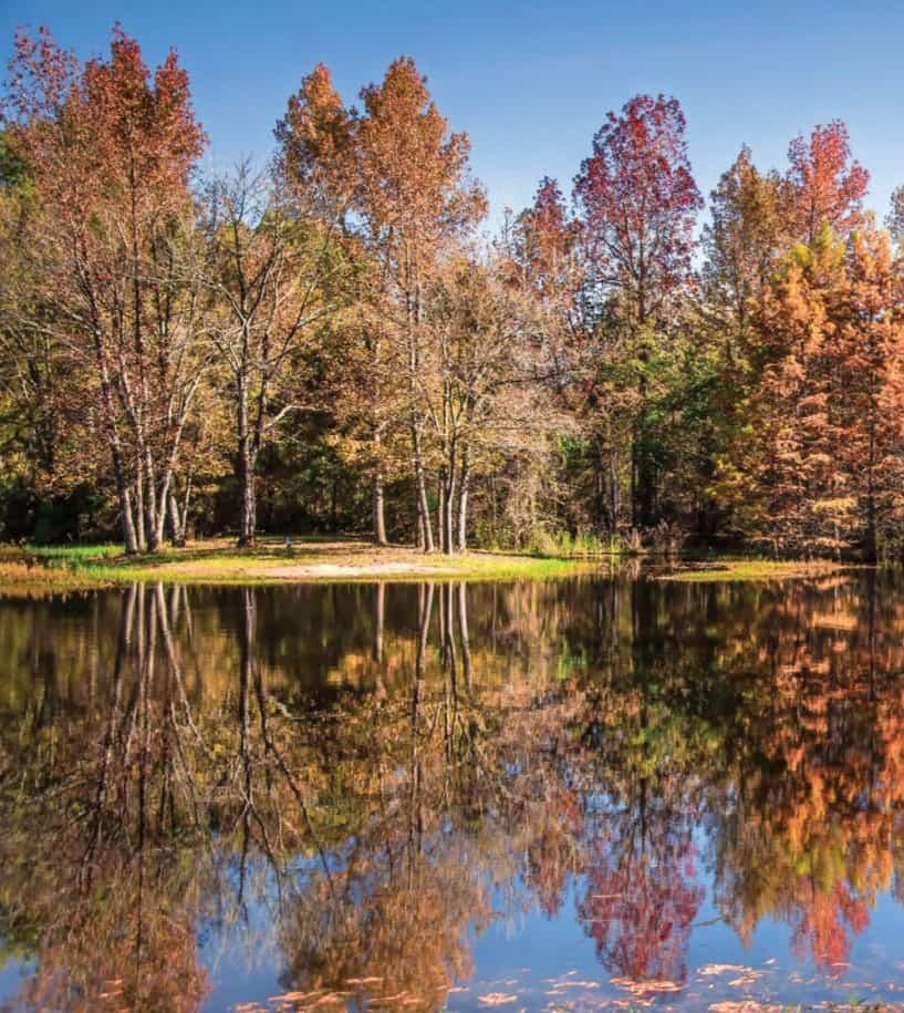 Lake Bob Sandlin State Park in Texas has great Fall Foliage