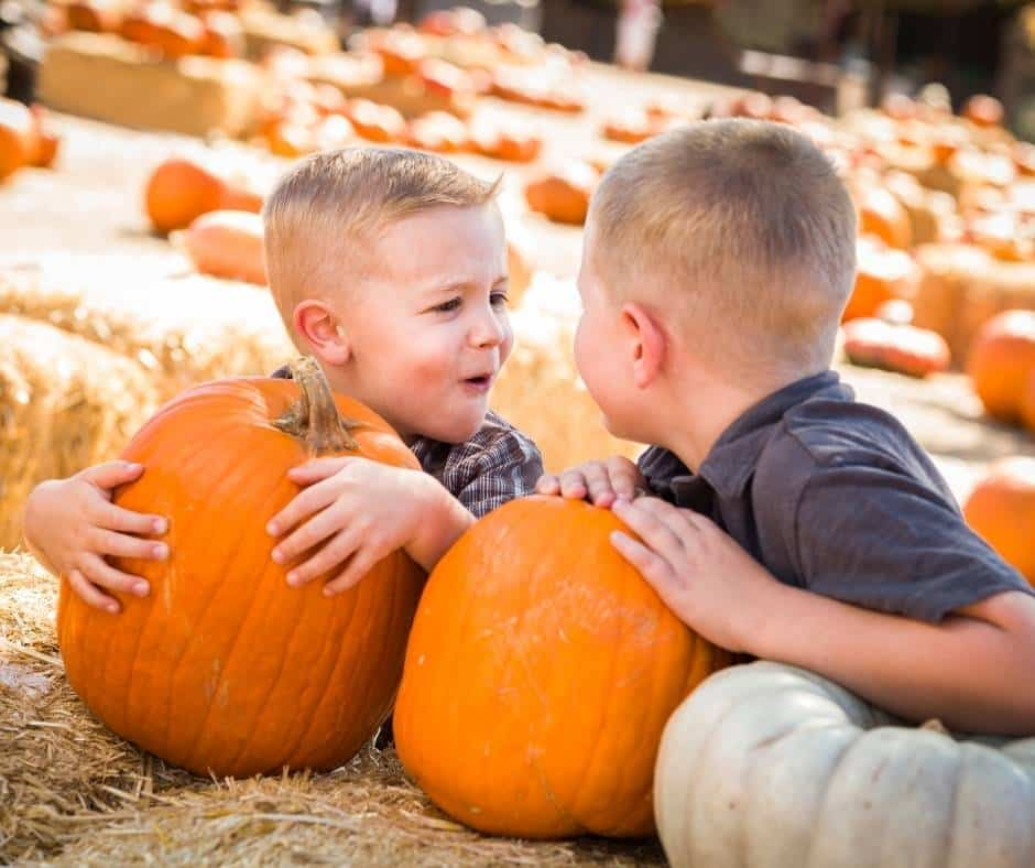 8 Great Pumpkin Patches in Las Vegas for 2021 1