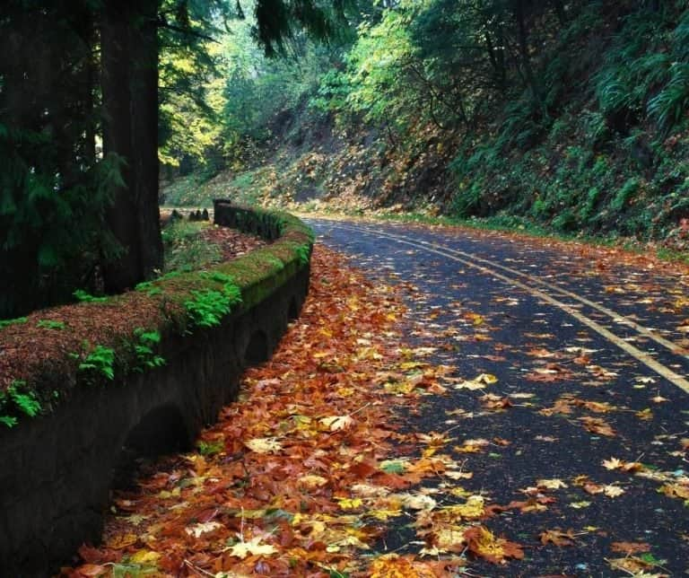 HIstoric Columbia River HIghway is lovely in the fall