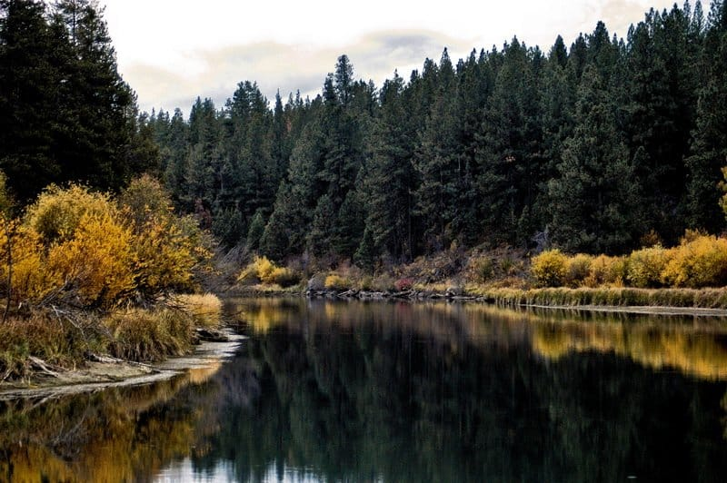 Deschutes River Fall Color in Oregon