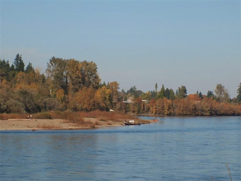 Minto Brown Island Park in Salem is a nice spot to enjoy fall foliage