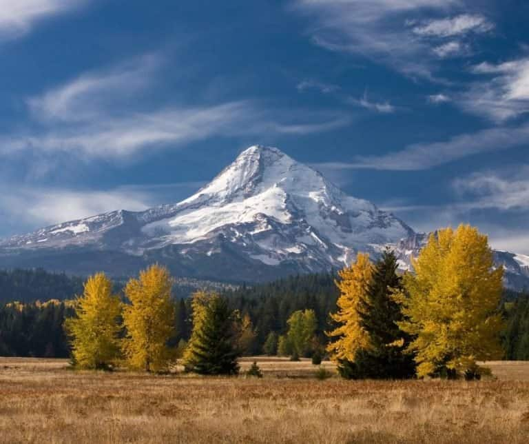 Mount Hood is a nice place to enjoy early season fall color in Oregon
