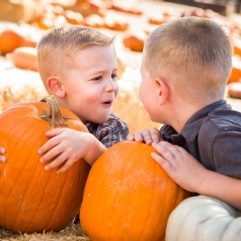 8 Great Pumpkin Patches in Las Vegas for 2021