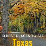 Texas fall Foliage