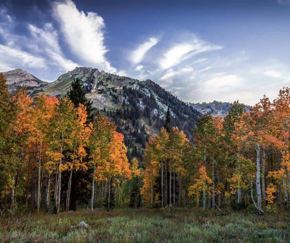 Utah Fall Colors- 10 Places to Enjoy Fall Foliage in Utah 1