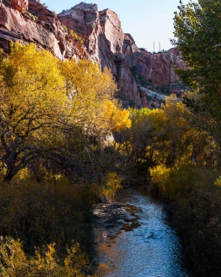 Fall color along Scenic Byway 12 in Utah