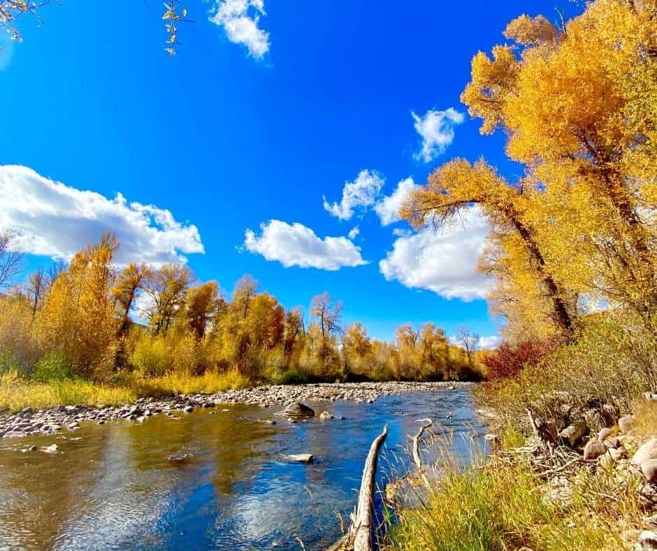 Fall colors in Utah's Big  Cottonwood Canyon