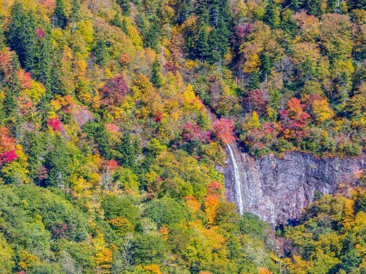 10 Amazing Places to See North Carolina Fall Colors