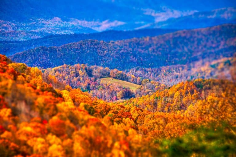 Beech Mountain is a great destination for North Carolina Fall Fioliage
