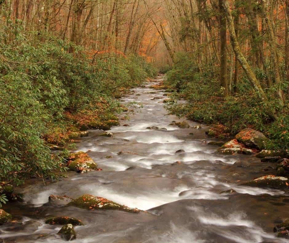 Oconaluftee River fall foliage in North Carolina