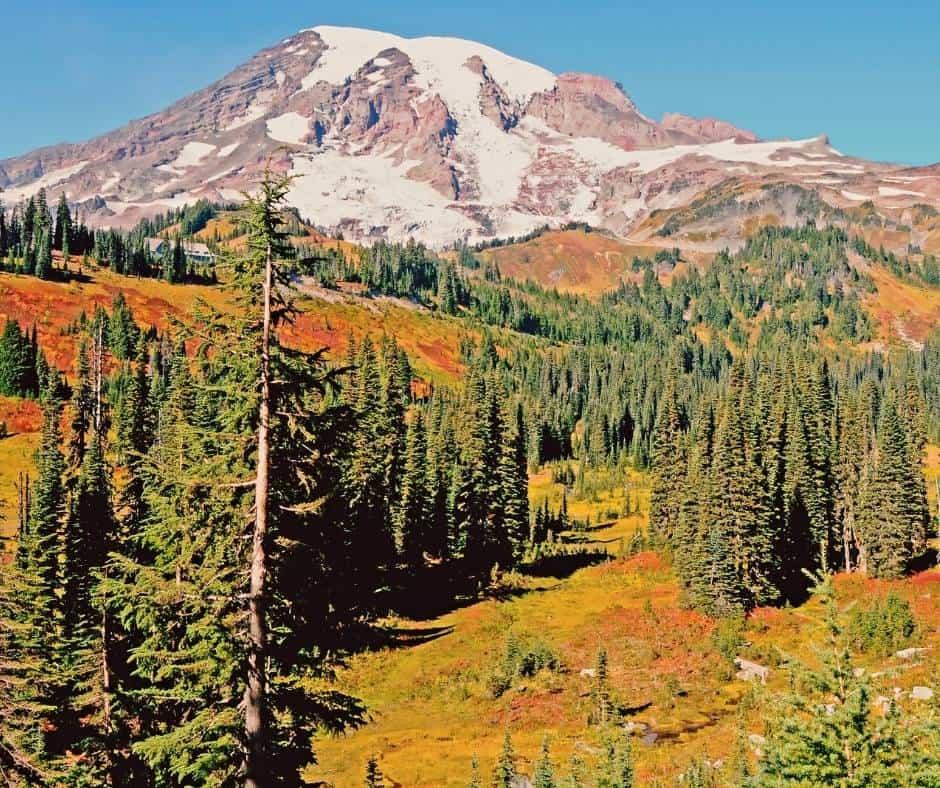 Mount Rainier National Park in the autumn