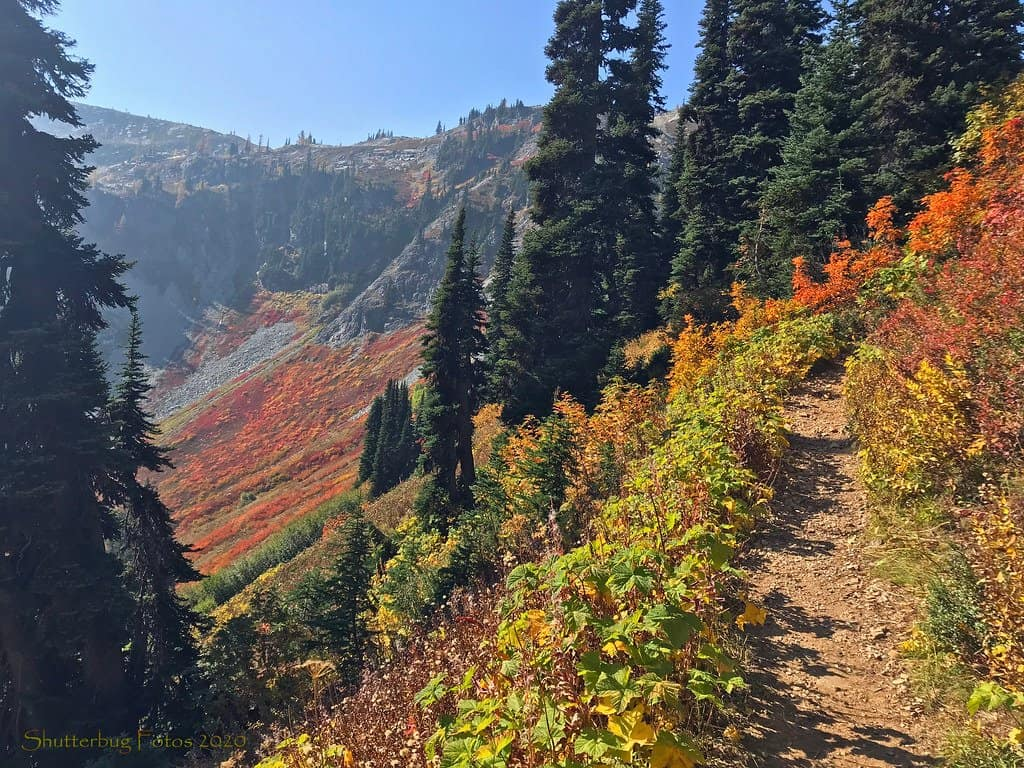 Heather Maples Pass in North Cascades National Park