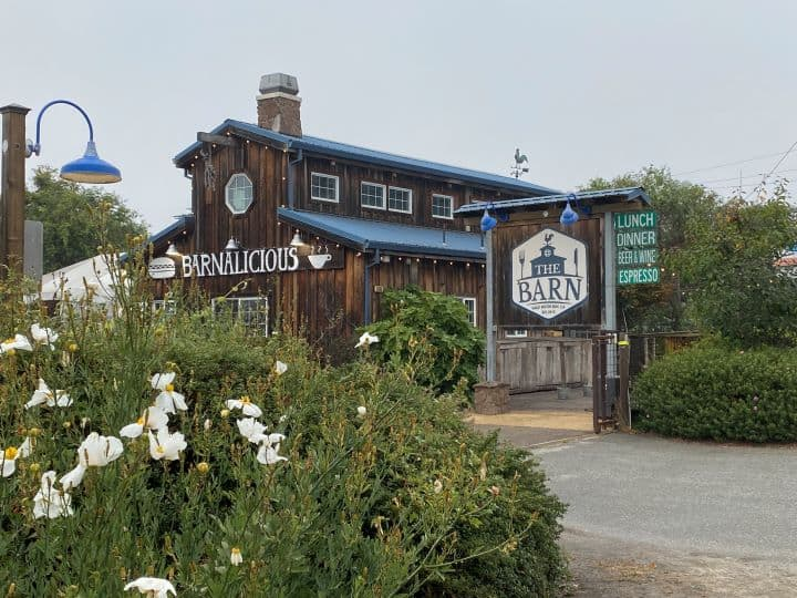 8 Family-Friendly Things to do in Half Moon Bay 10
